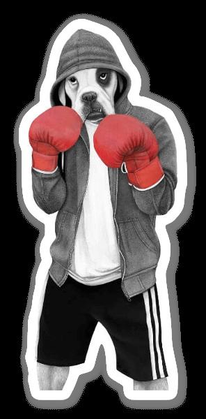 ストリートボクサー ステッカー