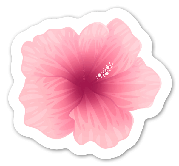 Hibiscus pegatina