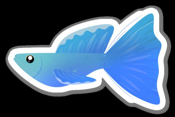 Sininen kala tarra