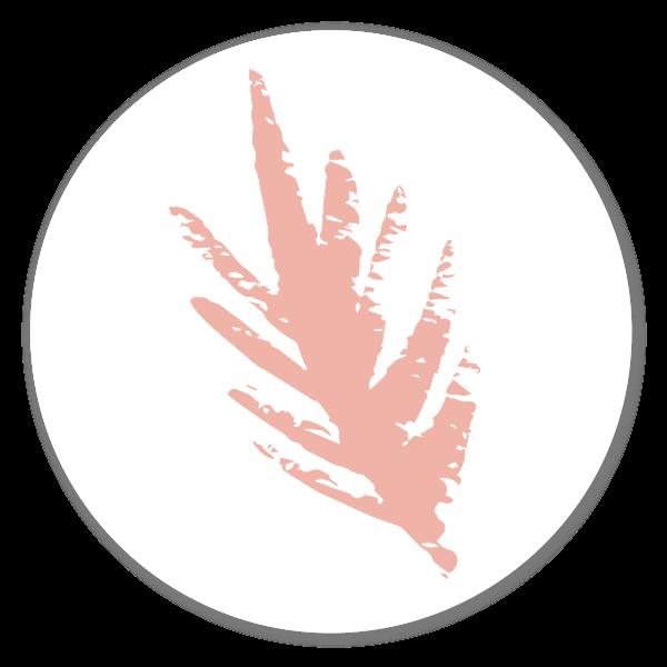 Powder Rose Feather Art sticker