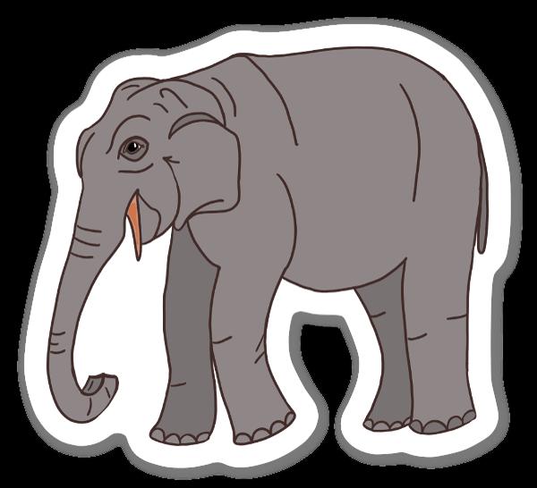 Słoń azjatycki naklejka