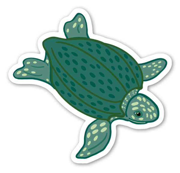 Tartaruga di mare liuto sticker