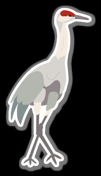 Sandhill Crane sticker
