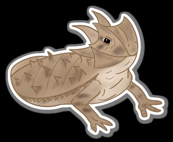 Texas Horned Lizard sticker