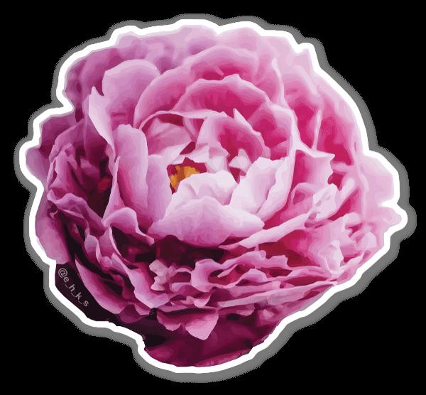 Floral Peony sticker