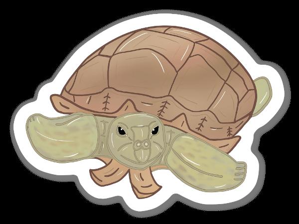 Tartaruga Speronata sticker