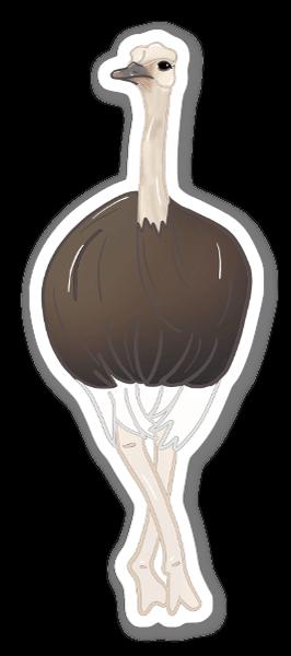 Avestruz sticker