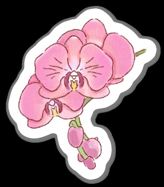 Orchidée Rose sticker