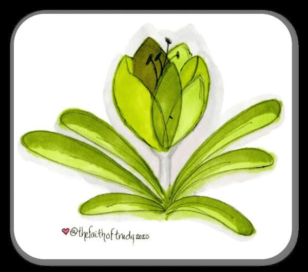 Adesivo tulipano verde sticker