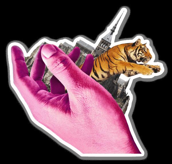 Tiger Dreams sticker