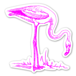 Flamant rose sticker