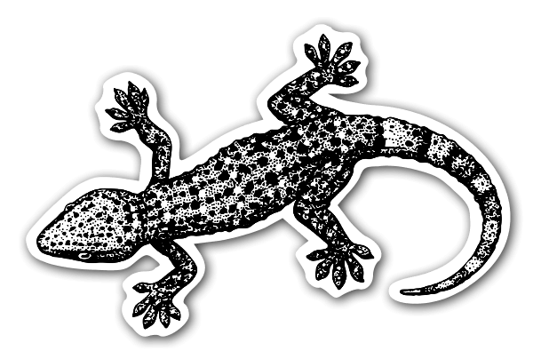 Gekko Sticker