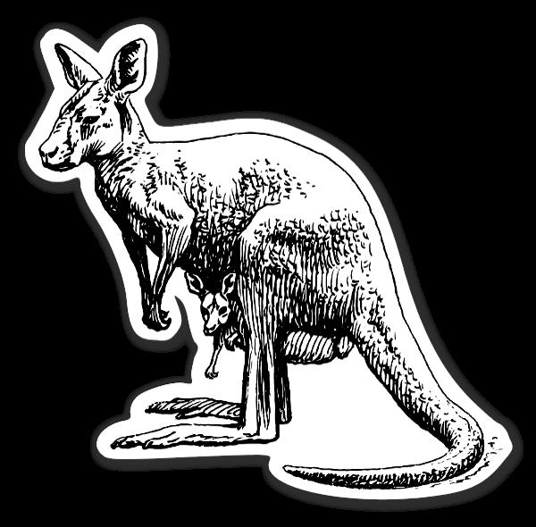 Kangaroo Klistremerker